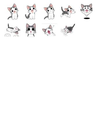 katze chi cats